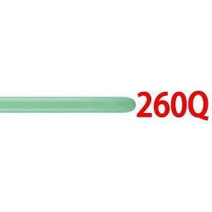 260Q Wintergreen , QL260F43963