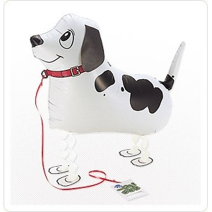 SAG Walking Balloon - Pointer 潘達犬 , *SAG-W2246 <Helium #F>