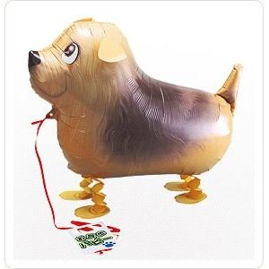 SAG Walking Balloon - Norfolk Terrier 嗲利狗 , *SAG-W2257 <Helium #F>