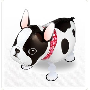 SAG Walking Balloon - Bull Dog 老虎狗 , *SAG-W8834 <Helium #F>