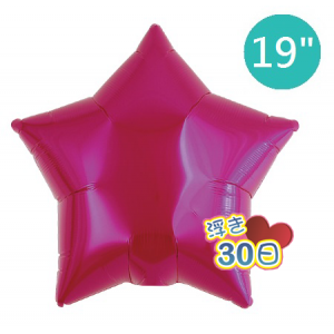"ibrex Star 19"" 星形 Metallic Magenta , TKF19SP311210 <Helium #B>"